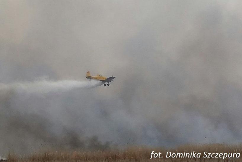Region. Minister środowiska Michał Woś i główny konserwator przyrody Małgorzata Golińska podsumowali akcję gaśniczą w Biebrzańskim Parku Narodowym