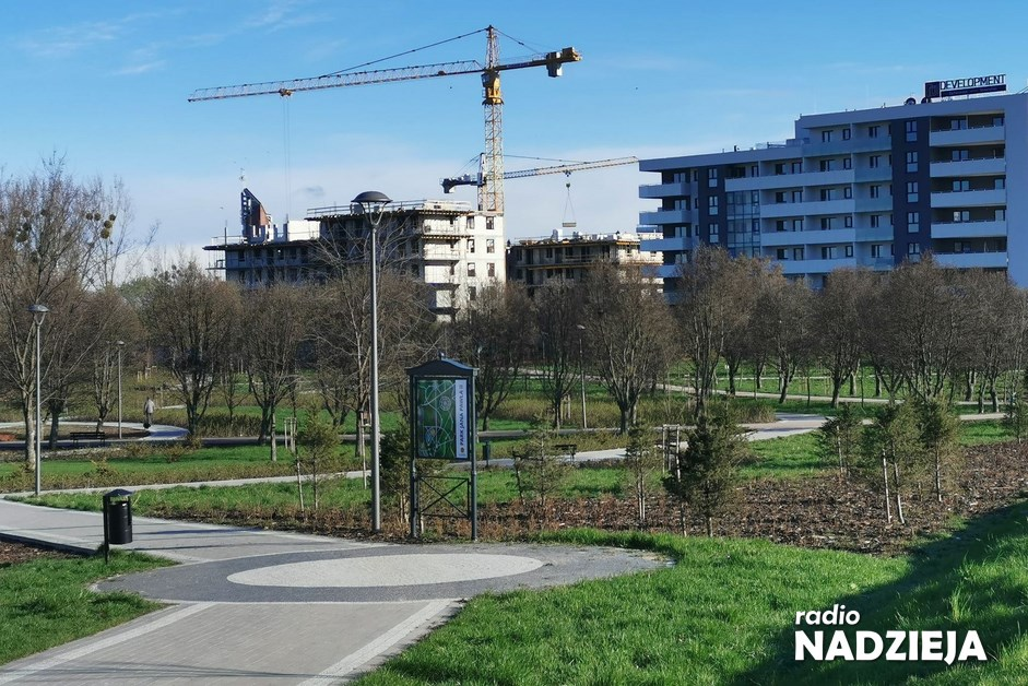 Łomża: Gastronomia w Parku Jana Pawła II? Będą konsultacje