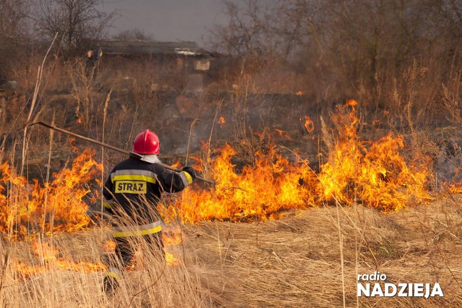 Region: Pożary na łąkach i lasach